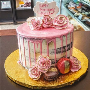 Naked Pink Drip Birthday Cake