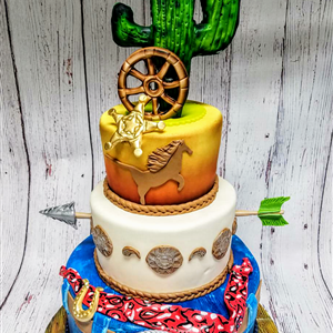 Fun 3 Tier Western theme Birthday Cake